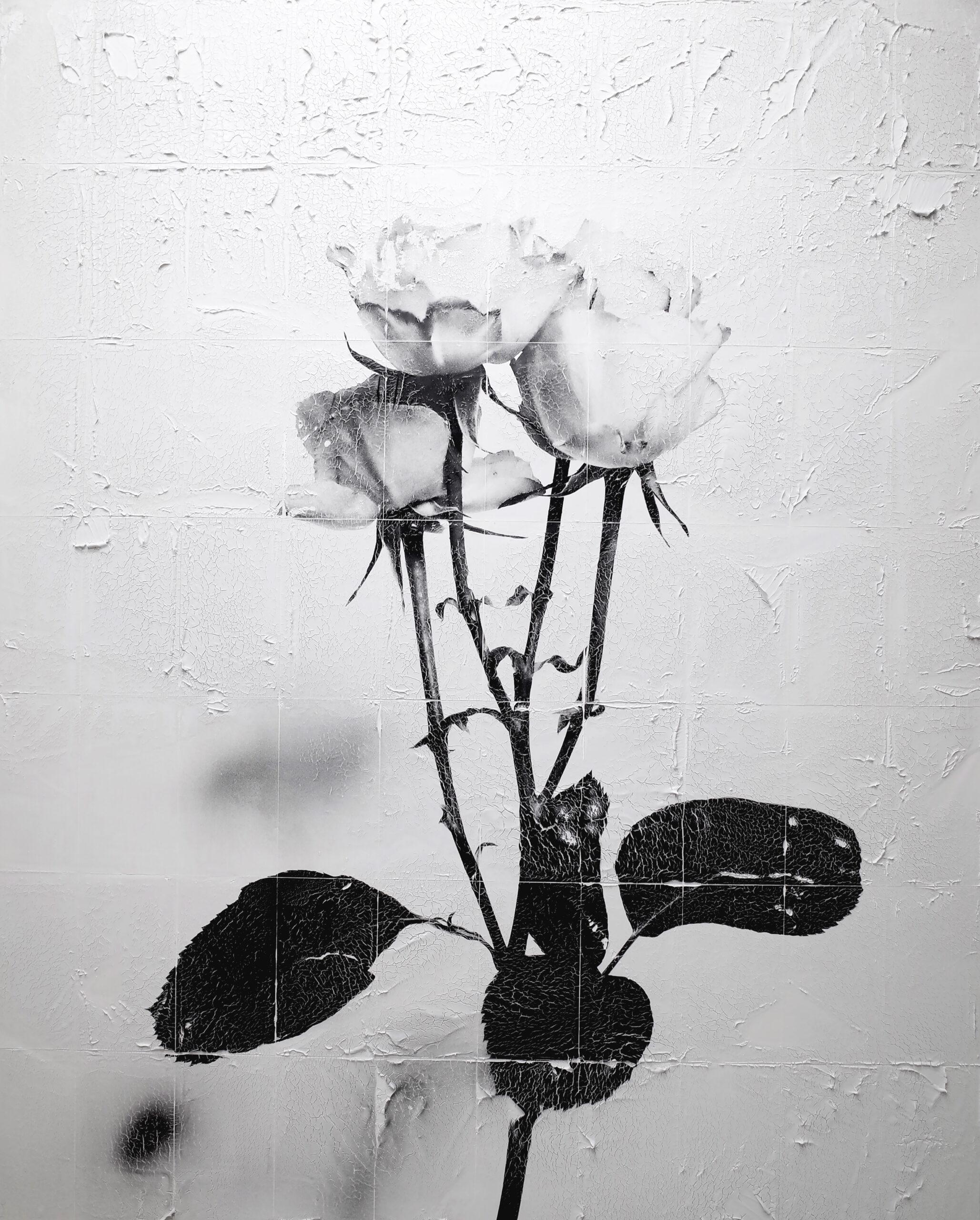 """YURINA OKADA Solo Exhibition """"Walk in a dream"""""""
